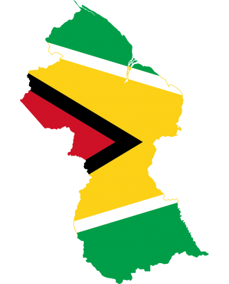 Guyana Emails List